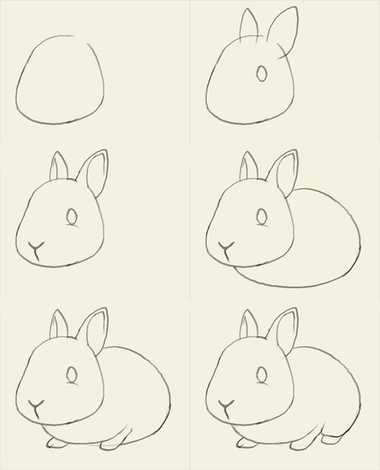 easy sketches to draw - HOW TO DRAW A BUNNY