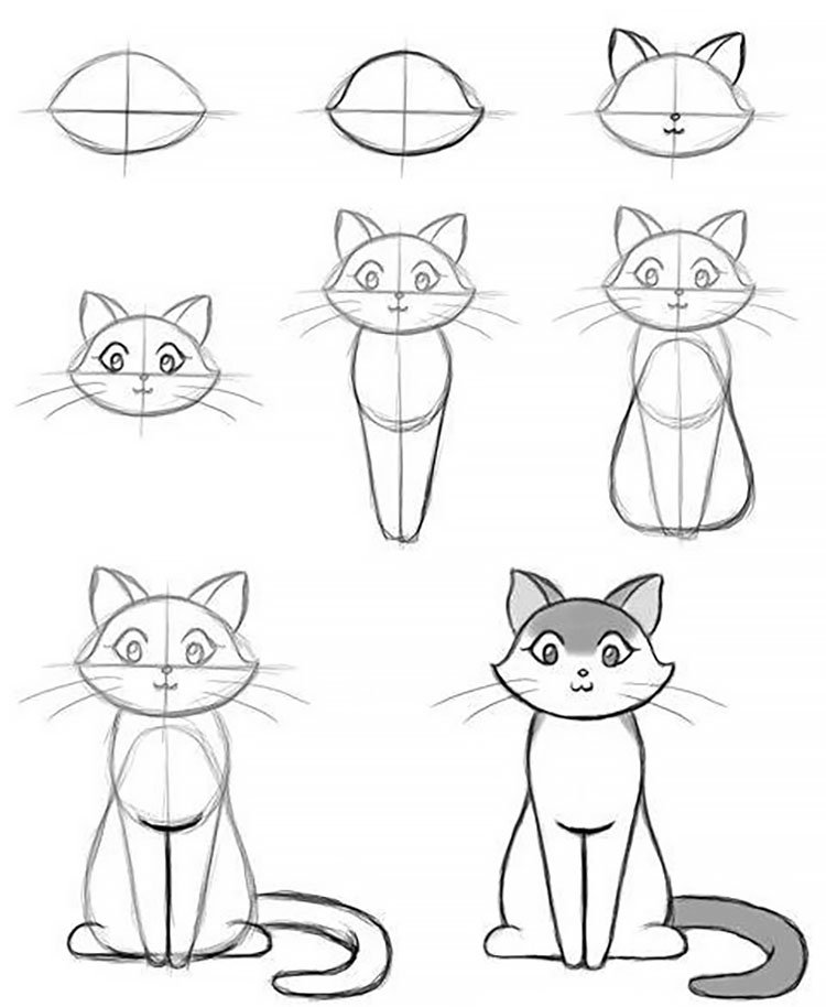 easy sketches to draw - HOW TO DRAW A CAT